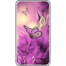 Шаблон №2242 Фиолетовая бабочка