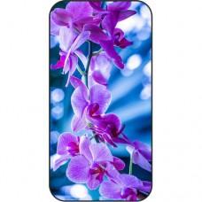 Шаблон №2271 Темно фиолетовая орхидея